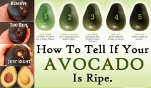 how to tell if avocado is ripe